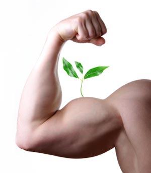 grow-muscle